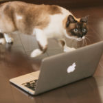 HTML・CSSプログラミング基礎・言語の書き方入門